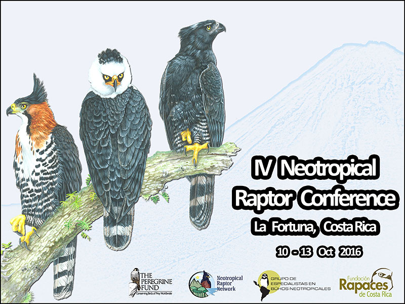 IV Neotropical Raptor Network Conference
